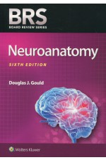 BRS Neuroanatomy, 6th ed.